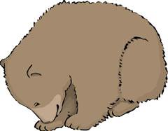 クマの子ハンス